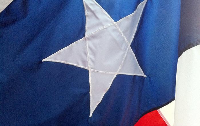Texas flag by Frank Heinz